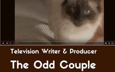 Television Writer and Producer: The Odd Couple gets a Cat