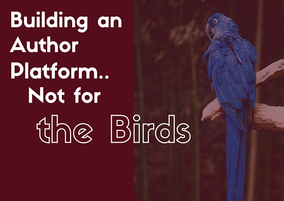 Building an Author Platform: Not for the Birds